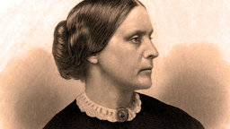Build a Logical Case - Susan B. Anthony